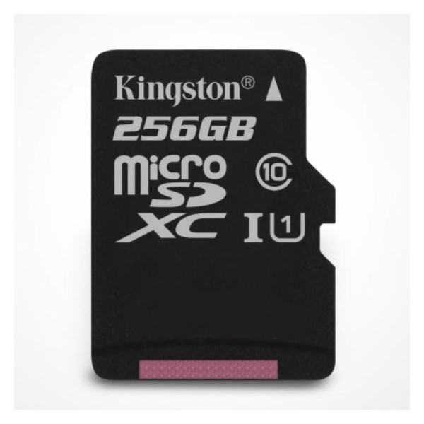 Kingston Canvas Select (SDCS/256GB) 256GB microSDHC SD Adapter